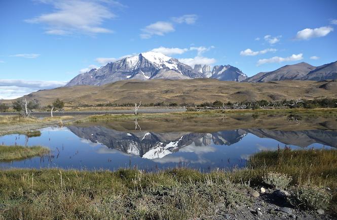 Berge Patagonien Umweltschutz Tiere