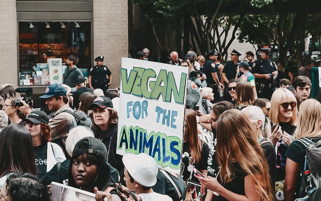 Weltvegantag Tierschutz vegan