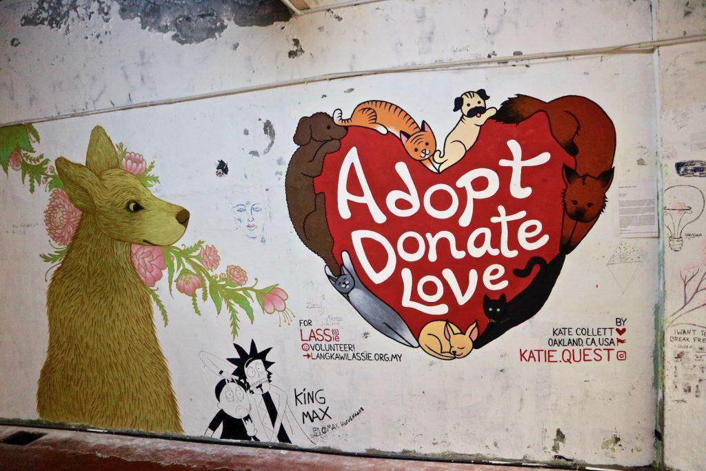 Tier adoptieren Tierschutz